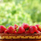 Strawberries in a wicker basket. Blurred background of a summer garden. Stock Photo