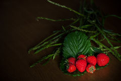 Strawberries And Wild Asparagus Stock Photos
