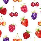 Strawberries, wild strawberries, blackberries, raspberries, cherries variety. Strawberries, wild strawberries, blackberries, raspberries, cherries, seamless Royalty Free Stock Photography