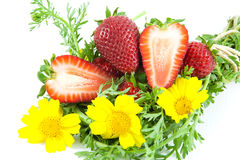 Free Strawberries With Flowers Royalty Free Stock Images - 13845979
