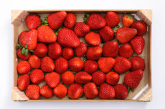 Strawberries in a wooden box Stock Photos