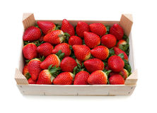 Strawberries with a wooden box. Stock Image
