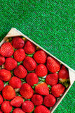 Strawberries in a wooden box on grass Royalty Free Stock Images