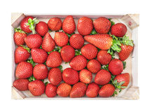 Strawberries in wooden box Stock Images