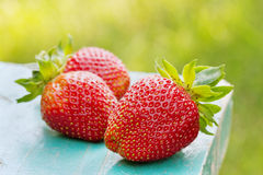Strawberries on wooden desk against lawn Stock Photo