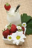 Strawberries yogurt. Closeup of open jar of organic yogurt and delicious strawberries with flowers royalty free stock photography