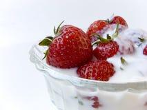 Strawberries in yogurt. Strawberries with yogurt in crystal bowl on white Stock Photos