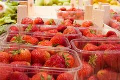 Strawberriies in dozen royalty-vrije stock fotografie
