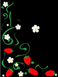 Strawberris pattern Royalty Free Stock Images