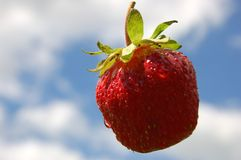 Strawberry 1. Strawberry in sky Royalty Free Stock Photography