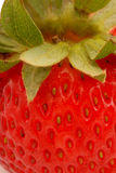 Strawberry. Macro photo of strawberry royalty free stock photography