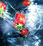 Strawberry. A fresh strawberry in cold water Stock Photography