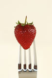 Strawberry. A strawberry on a fork against a white background Stock Images