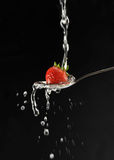 Strawberry. In a spoon against a black background Royalty Free Stock Photography