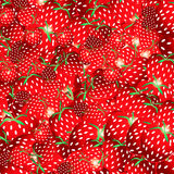 Strawberry. Beautiful background with a strawberry fruit, illustration Stock Photography