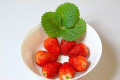 Strawberry Stock Image