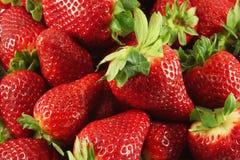 Strawberry. Many large fresh ripe strawberries Stock Photos