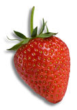 Strawberry. A fresh strawberry on a white background Stock Photography