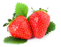 Strawberry. With leaves on white background Royalty Free Stock Photos