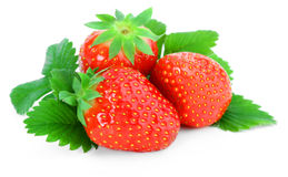 Strawberry. With leaves on white background Royalty Free Stock Images