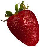 Strawberry. High detailed vector illustration Stock Photo