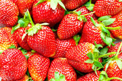 Strawberry. Background with bright red strawberry Royalty Free Stock Images