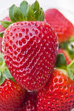 Strawberry. A group of red strawberries Stock Photography