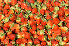 Strawberry. The background of fresh strawberry Royalty Free Stock Images