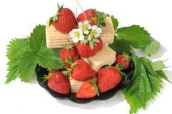 Strawberry. Stock Photos