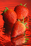 Strawberry #2. Strawberry, water and mirror surface Royalty Free Stock Photos