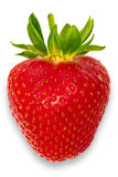 Strawberry. A high resolution of a single strawberry in macro Royalty Free Stock Photography
