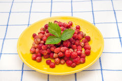 Strawberry. Strawberries on a yellow  plate with green leaf on a checkered tablecloth Royalty Free Stock Images