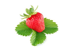 Strawberry. Isolated on white background Stock Photo