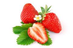 Strawberry. Isolated on white background Stock Photography
