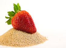 Strawberry. Red Strawberry and brown sugar Stock Photography