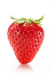 Strawberry Stock Photo