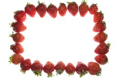Strawberry. This is the photo was taken a lot of strawberry spread Stock Images