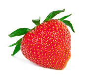Strawberry. Red strawberry isolation on the white backgrounds Stock Images