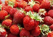Free Strawberry Royalty Free Stock Image - 2739656