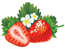 Free Strawberry Stock Photos - 2974373