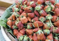 Free Strawberry Stock Images - 30695484
