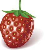 Strawberry. Just a strawberry on a white background stock illustration
