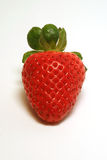 Strawberry. Red strawberry close up Stock Image