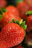Strawberry. Fresh Strawberry on black background Stock Image