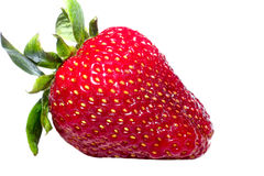 Strawberry. Close up of a strawberry. Isolated over white background Royalty Free Stock Images