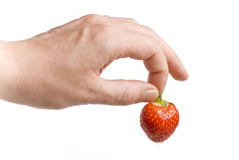 The Strawberry Royalty Free Stock Photography