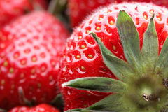 Strawberry. Red strawberry super close up Stock Photography