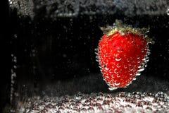 Strawberry_2 Obrazy Stock