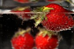 Strawberry_3 Obrazy Royalty Free