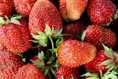 Strawberry. Strawberry background royalty free stock photography